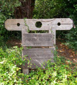 Hinton St Mary Village Garden